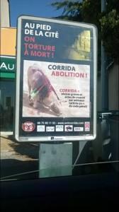 affiche carcassonne 2014