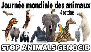 Journée mond animaux