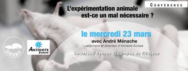 Ménache Rennes