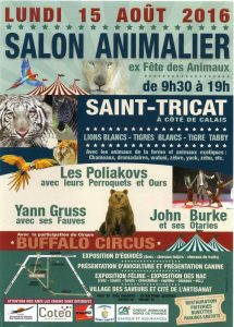 Saint-Tricat