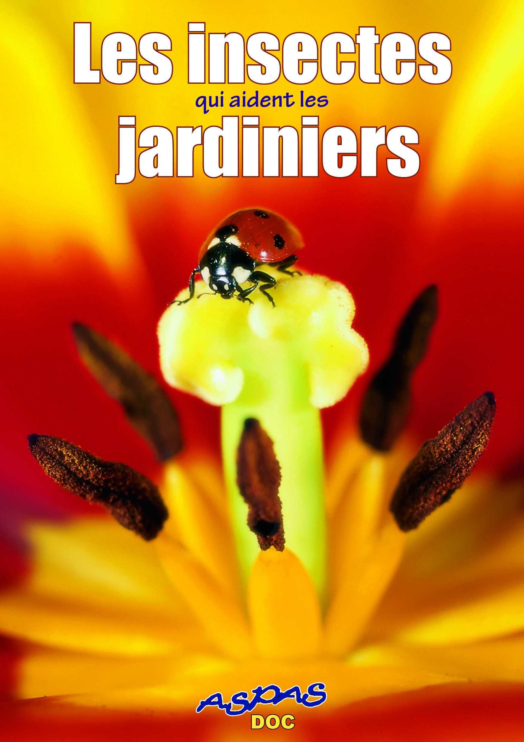 Couv.insectes.jardi#23BF3CB