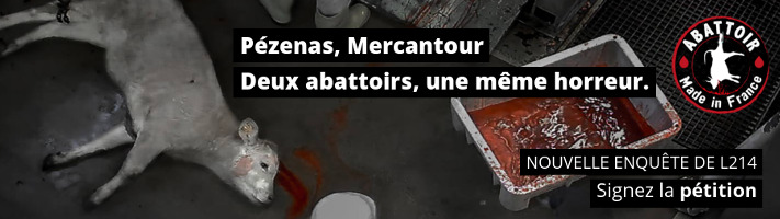 2016-06-pezenas-mercantour-711